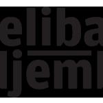 djelibadjembe_logo